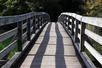 bridge-494394_640