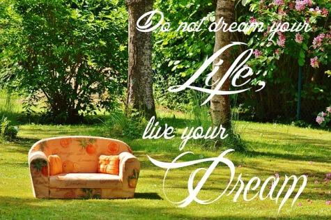 dream-840219_640