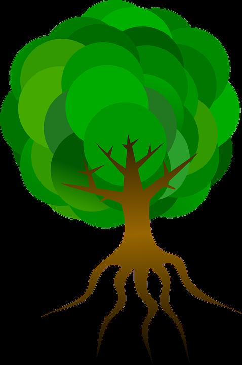 tree-153964_960_720