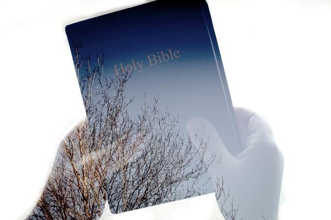 bible-1154567_960_720